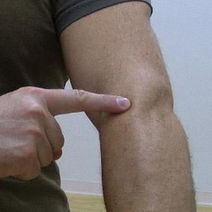 forearm pain near your elbow